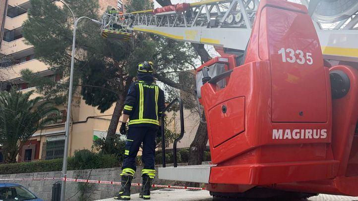 Los bomberos realizan casi 500 intervenciones por el viento