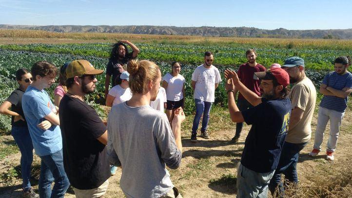 Alianzas entre consumidores y productores para paliar los problemas del campo