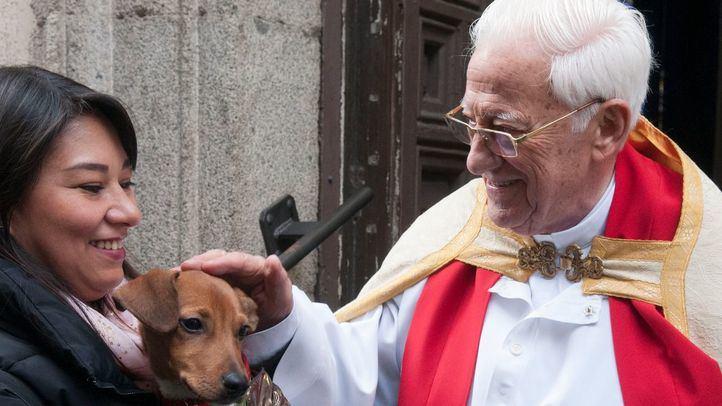 El Padre Ángel pide ayuda urgente para las residencias de Mensajeros de la Paz
