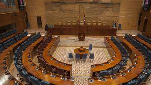 La Asamblea cancela por problemas técnicos su primer Pleno parcial telemático