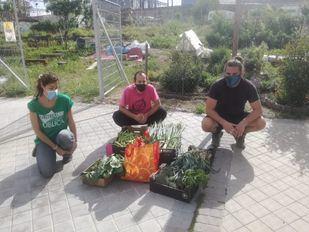 Más de una veintena de huertos urbanos de Madrid donan sus cosechas a las familias más vulnerables