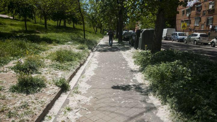 El Ayuntamiento terminará a finales de mayo el desbroce de la vegetación crecida en aceras y bordillos