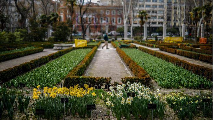El Jardín Botánico podrá recibir visitantes desde el lunes 25 de mayo