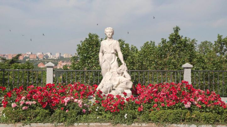La dalieda convertida en rosaleda