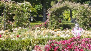 Jardín de la Rosaleda en El Retiro.