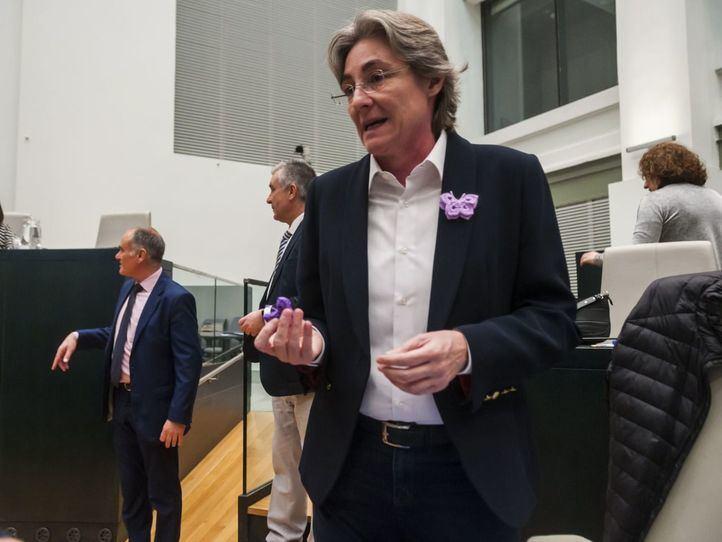 Marta Higueras se desmarca del proceso de constitución de Más Madrid 'como partido político'