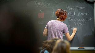 Naturaliza acompaña a los profesores madrileños que apuestan por educar en medioambiente