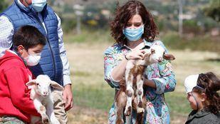 Isabel Díaz Ayuso visita a los ganaderos de la Sierra Norte, que han creado una iniciativa para dar salida a sus productos cárnicos