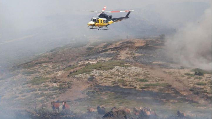El Plan Informa aumenta sus profesionales para prevenir y combatir incendios forestales