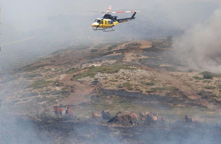 El Plan Infoma cuenta este año con cifra récord de profesionales para prevenir y combatir incendios forestales en verano