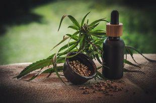 Los beneficios saludables que desconoces del aceite CBD
