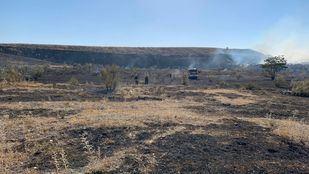Incendio en la Cañada Real: desalojada una granja de caballos