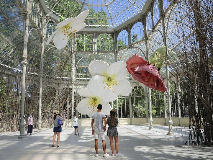 Exposición 'A un cuervo y los huracanes que, desde lugares desconocidos, traen de vuelta olores de humanos enamorados' en el Palacio de Cristal