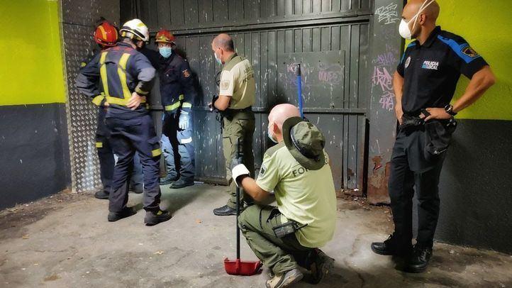 Encuentran una víbora venenosa escondida en la puerta de un garaje en Manzanares el Real