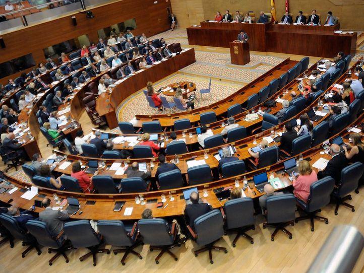 Asamblea Madrid, plenario