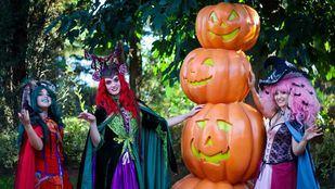 Laberintos y pasajes del terror para celebrar Halloween