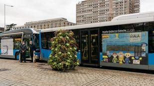 Autobuses vinilados con los dibujos ganadores.