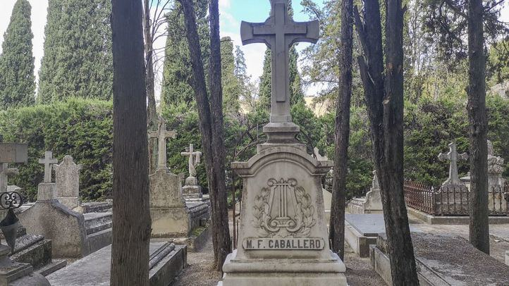 Manuel Fernández Caballero (compositor, 1835-1906)