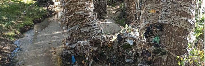 El río Jarama, amenazado por la presencia de aguas fecales y residuos sólidos