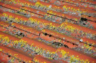 Problemas provocados por las lluvias en los tejados: ¿cuáles son los más comunes y cómo corregirlos?
