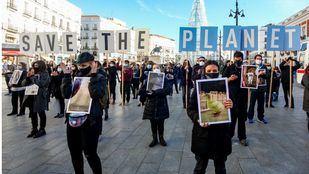 Manifestación contra el maltrato animal