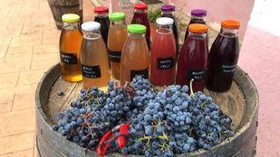 Producción de zumo de uva ecológico