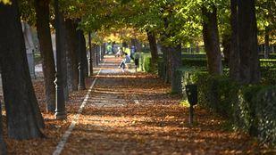 El Retiro y otros ocho parques de Madrid mantendrán zonas balizadas por meteorología adversa