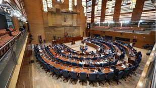 La izquierda en la Asamblea presenta un recurso de amparo ante el TC por la polémica votación en la Ley del Suelo