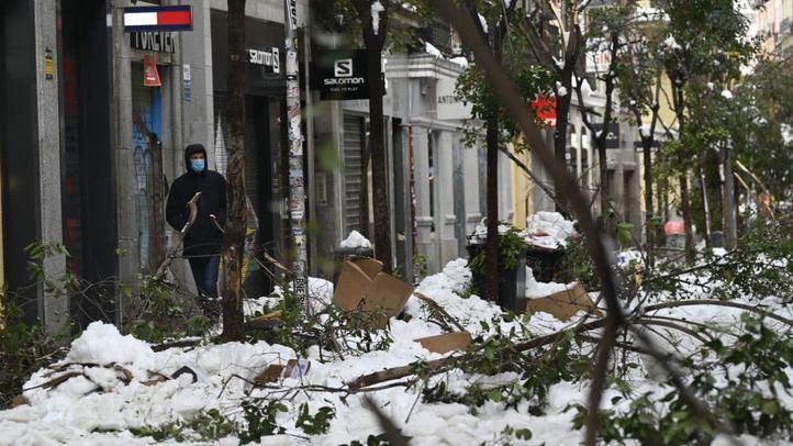 Las ramas de los árboles caídos en el centro de Madrid tras la nevada