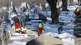 El cementerio de La Almudena continúa con los trabajos de mantenimiento para recuperar la normalidad tras Filomena