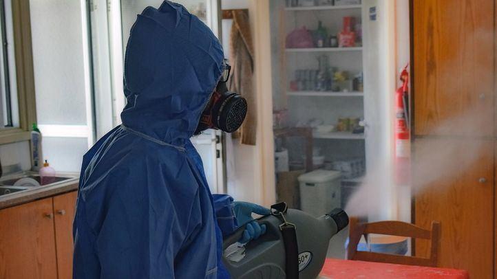 El mantenimiento es la forma más eficaz para evitar las plagas