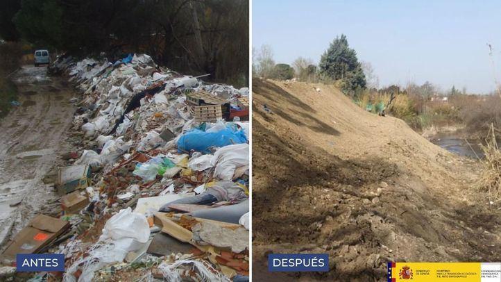 Más de 400 toneladas de residuos recogidas en la primera fase de los trabajos en el cauce del Guadarrama