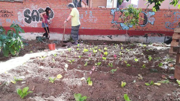 'El Solar de Matilde' ve su futuro peligrar por la construcción de vivienda libre