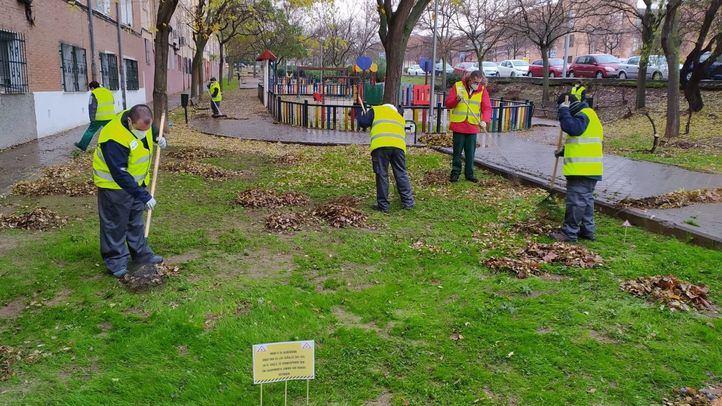 La UDC de Vicálvaro  trabajando en un parque del distrito