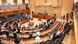 La mesa presentará un recurso ante el TSJM contra el decreto de elecciones