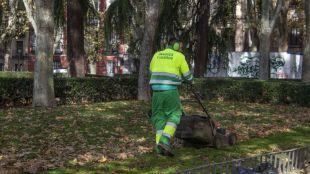 Madrid prevé un retén 24 horas que actúe ante urgencias en zonas verdes