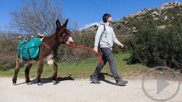 'Dejando Huella' promueve actividades para recuperar al burro