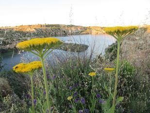 Lagunas de Ambroz.