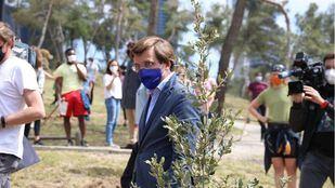 El alcalde, José Luis Martínez-Almeida, participa en una plantación de encinas en el parque de La Ventilla.