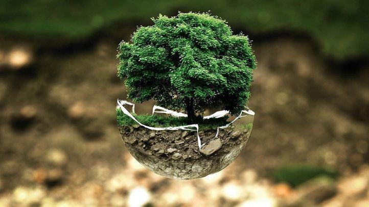 Fundación Montemadrid y CaixaBank lanzan la 'III Convocatoria de Medioambiente y Desarrollo Sostenible'
