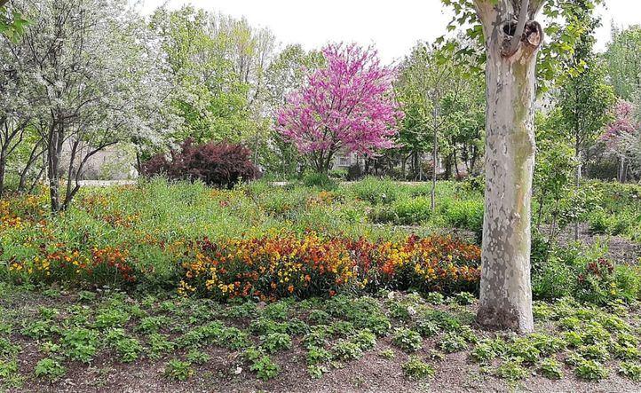 Los Jardines de la Finca Vista Alegre reabren el 1 de mayo