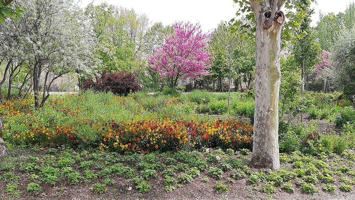 Los Jardines de los Palacios de la Finca Vista Alegre reabren al público el 1 de mayo