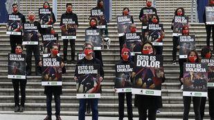 Asociaciones animalistas piden en Vistalegre que no se subvencionen festejos taurinos