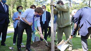Almeida y Villacís en la presentación de Re-Planta Madrid, una campaña para donar árboles y recuperar arbolado tras Filomena.