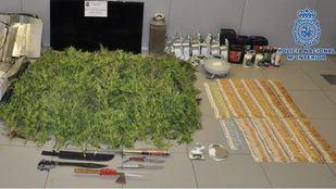 Desmanteladas dos plantaciones 'indoor' de marihuana con 126 plantas