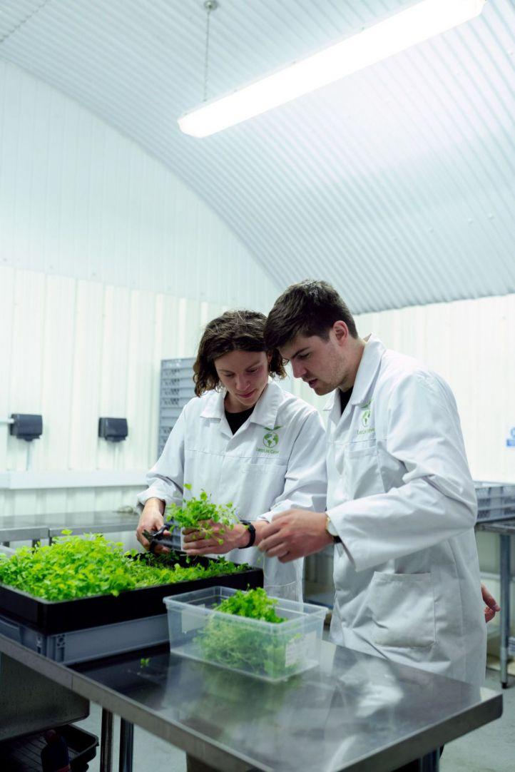 ¿Qué son las foodtech? Cuando la tecnología abraza la alimentación