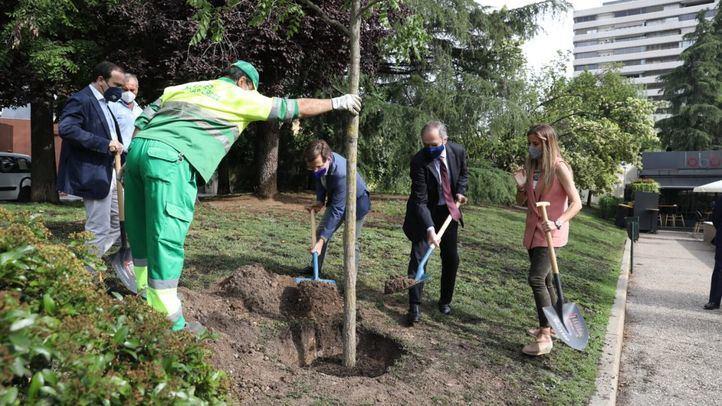 Almeida agradece la donación de 1.400 árboles para recuperar el patrimonio verde de Madrid