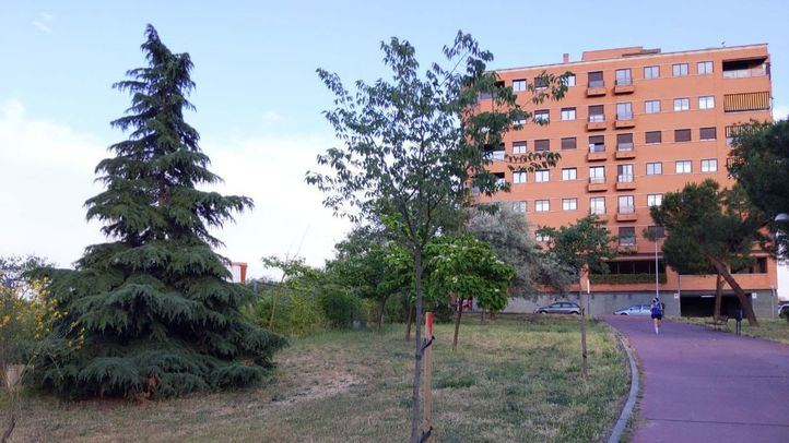 Zona verde donde se ubicará el aparcamiento disuasorio de Tres Olivos