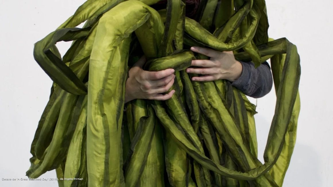 'Un encuentro vegetal' muestra la sensibilidad de las plantas en La Casa Encendida