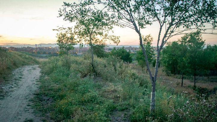 Cerro Almodovar en el barrio de Santa Eugenia y el distrito de Vallecas